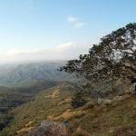 monteseel lookout point