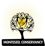 monteseel tree logo